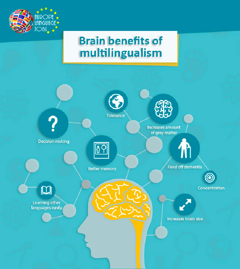 Infographic of brain benefits of language learning